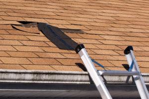 hail Damage Roof Shingles Repair