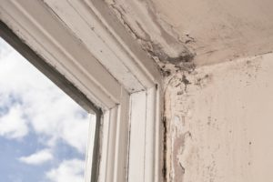 AAS-Restoration-mold-remediation-winter-home-mold
