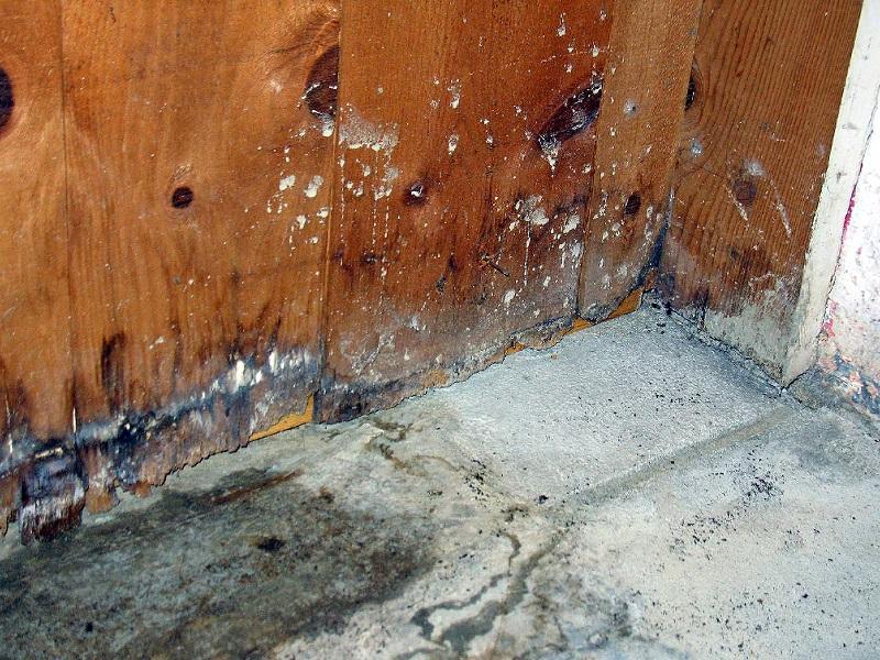 aas restoration water damage flooded basement dec 2018